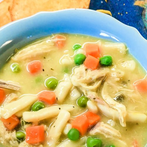 A bowl filled with chicken and noodle soup.