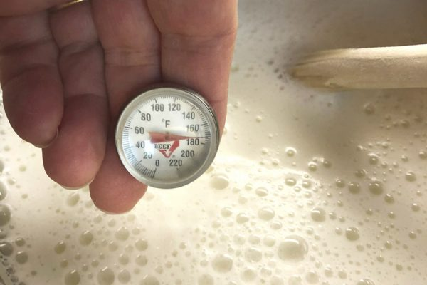 Instant-read thermometer taking the temperature of hot milk.
