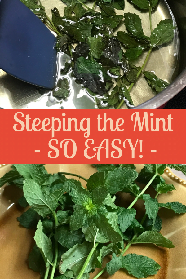 Steeping fresh mint for mojitos is so easy.