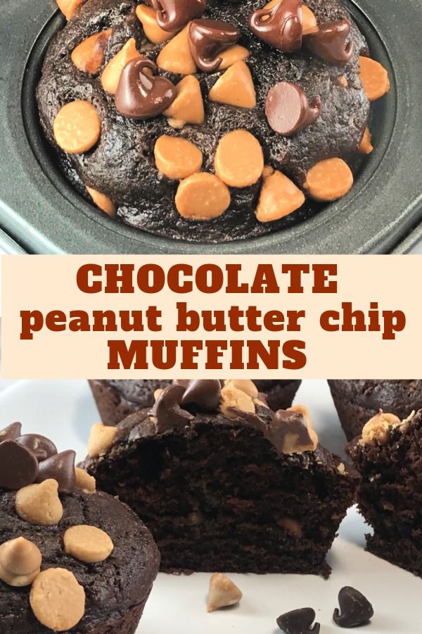 Chocolate Peanut Butter Muffins - moist, tender and rich.