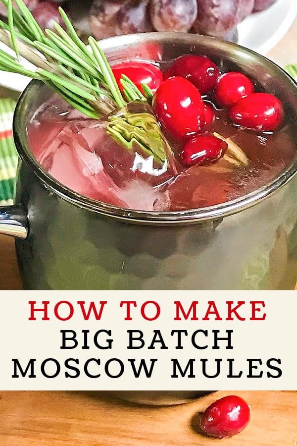 Mug of Cranberry Moscow Mule punch.