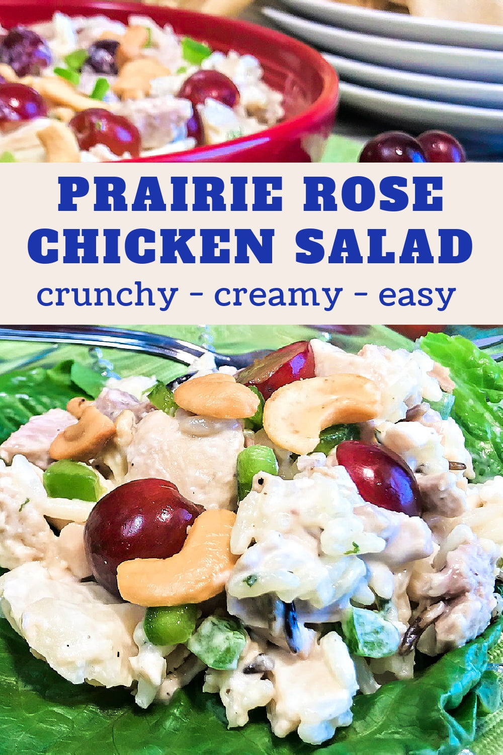 A serving of Prairie Rose Chicken and Wild Rice Salad on a plate.